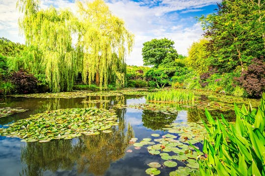 A 5-hour private excursion to Giverny from Paris