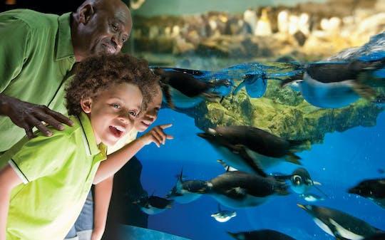"SeaWorld® San Diego ""Eat Free"" single-day ticket"