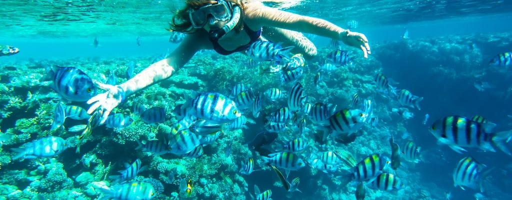 Croisière plongée avec tuba sur l'île de Mahmya Giftun
