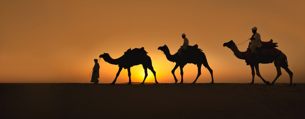 Naqb National Park in een 4x4 met kameelrit en diner