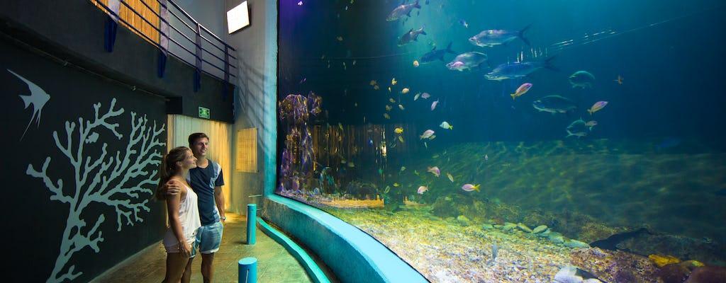 Boletos interactivos para el acuario de Cancún