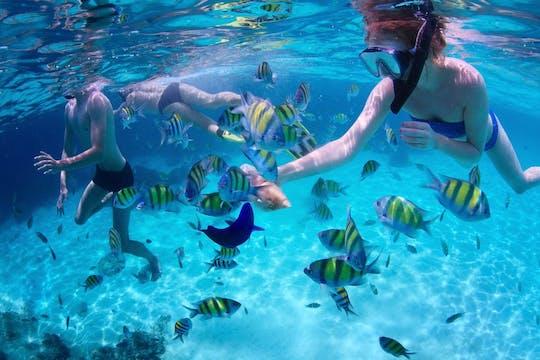 Aventura saltitante pela Ilha de Mactan