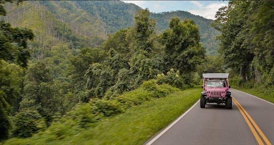 Excursão Newfound Gap Smoky Mountains