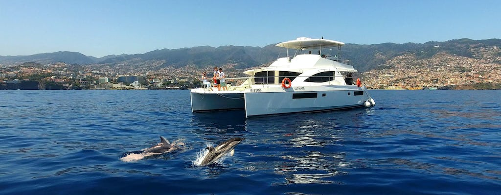 VIP Whale & Dolphin Watching Cruise
