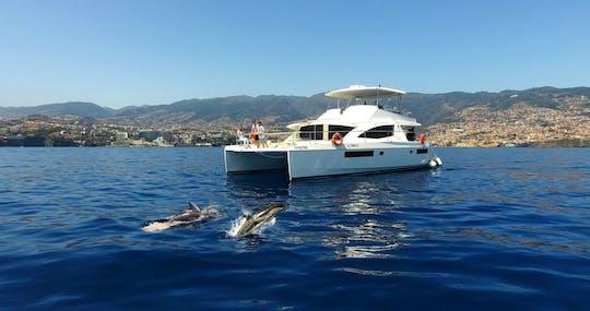 VIP Walvis & Dolfijn Spotten Cruise