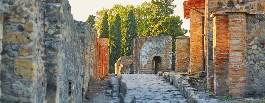 Pompeii and Naples full-day walking tour