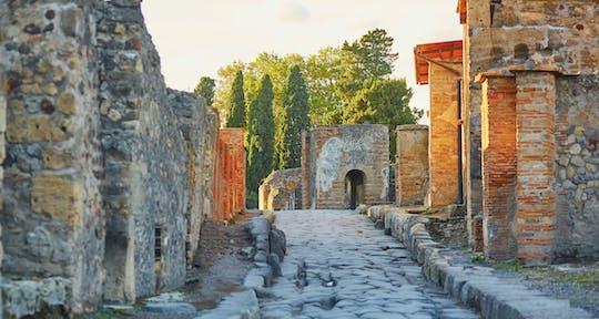 Tour a piedi di un'intera giornata di Pompei e Napoli