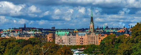 Stockholm and Stieg Larsson's world private walking tour