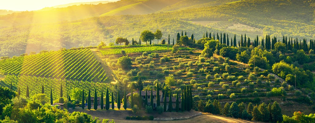Private tour of the Chianti wine region from Florence