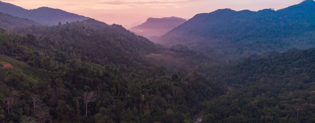 Sinharaja Forest Reserve Trek from Colombo