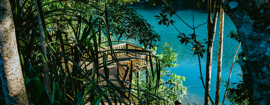 Atherton Tablelands Waterfalls and wildlife tour