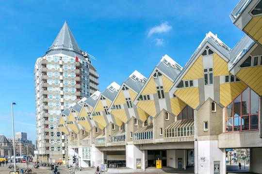 Достопримечательности Роттердама частная велосипедный тур