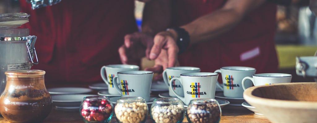 Master of Coffee Bogotá