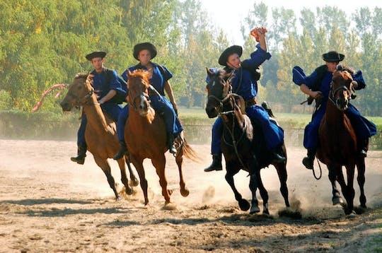 Excursión de un día a Kecskemet Puszta que incluye espectáculo de caballos y almuerzo desde Budapest