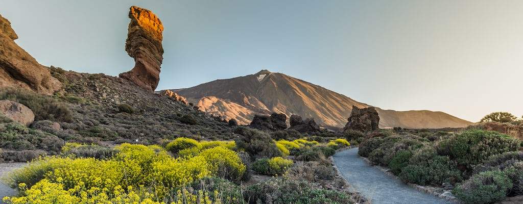 Halve dag tour door nationaal park Teide