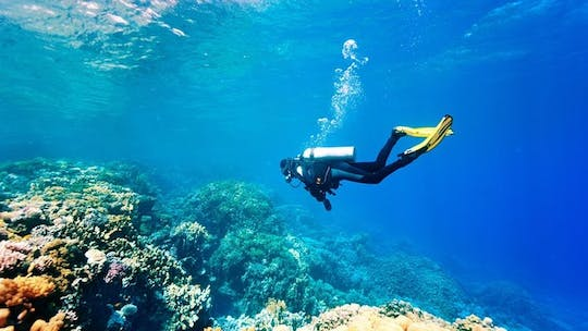 Kemer scuba diving experience with transfer from Antalya