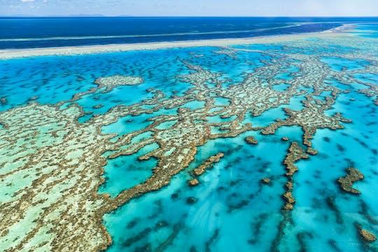Całodzienne wrażenia z nurkowania w Wielkiej Rafie Koralowej