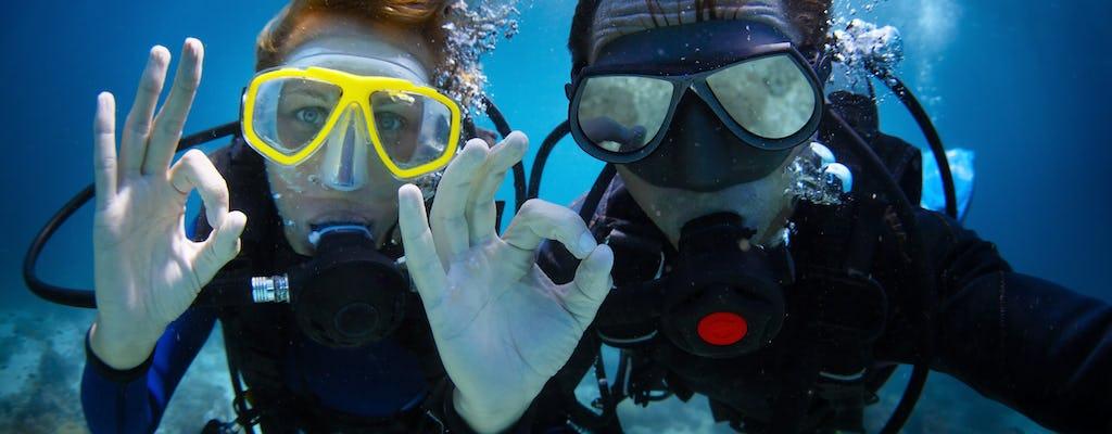 Experiencia de buceo de día completo en la Gran Barrera de Coral