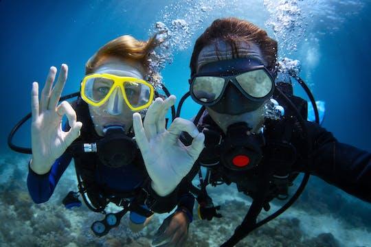 Expérience de plongée d'une journée à la Grande Barrière de Corail