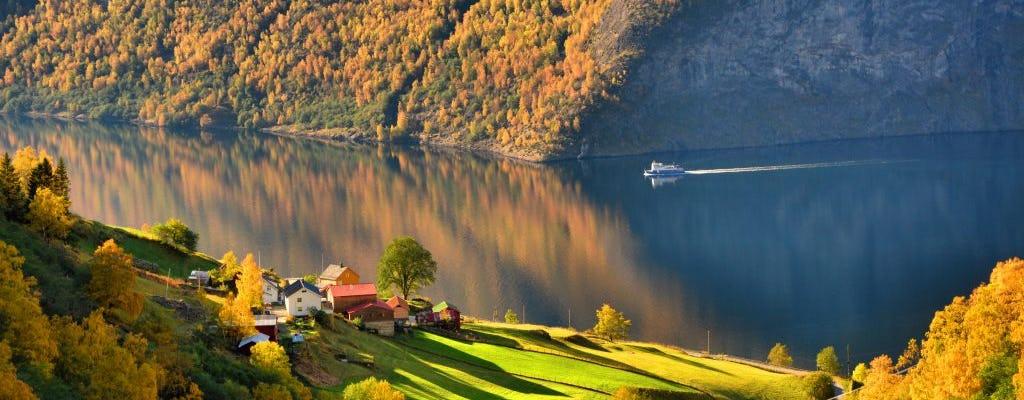 Aller-retour en Norvège avec guide privé au départ de Bergen
