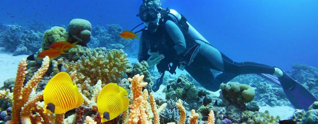 Expérience de plongée d'une journée à la Grande Barrière de Corail avec un guide PADI