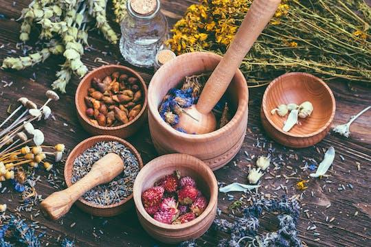 Травы и оздоровительный опыта в Умбрия