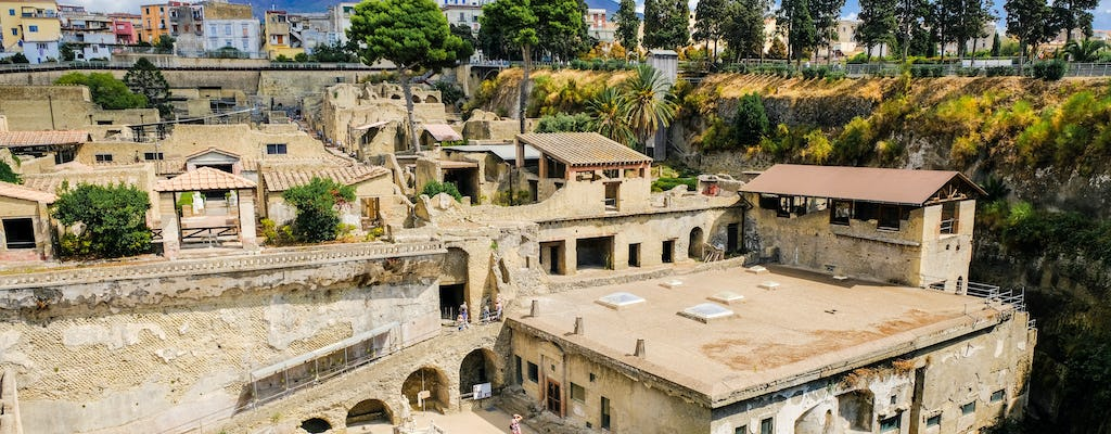 Herculaneum private tour with a local guide