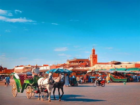 Recorrido por la ciudad de Marrakech de día completo premium con conductor