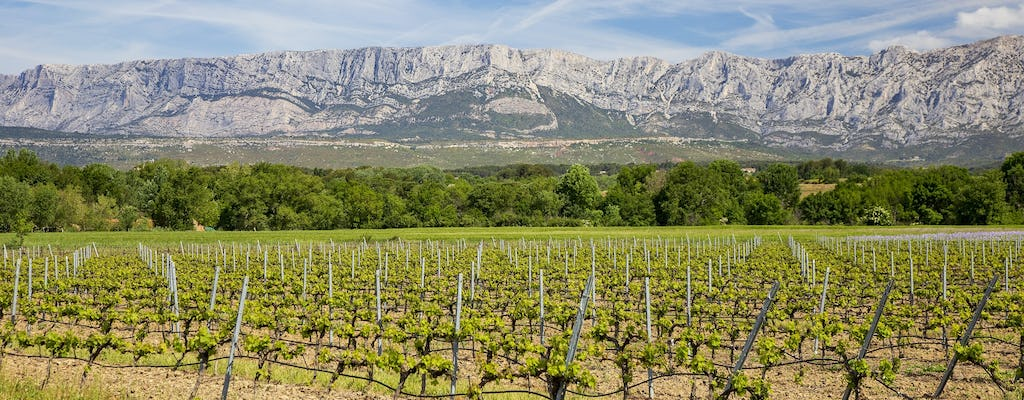 Coteaux d'Aix and Sainte-Victoire full-day private wine tour