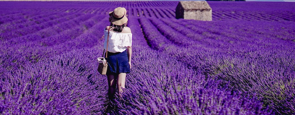 Full-day lavender tour in Valensole from Aix en Provence