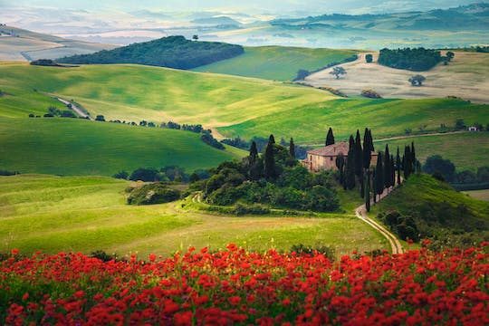 Pienza and Montepulciano food and wine tour from Siena