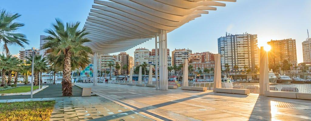 Recorrido en segway completo por Málaga