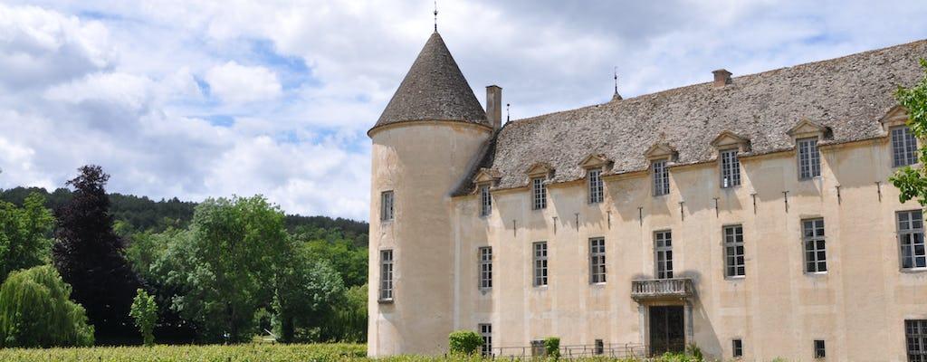 """""""Descubrimiento"""" de vino y patrimonio tour en grupo pequeño en Borgoña"""