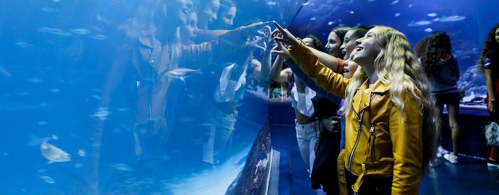 Skip-the-line tickets for the Atlantis Aquarium in Madrid