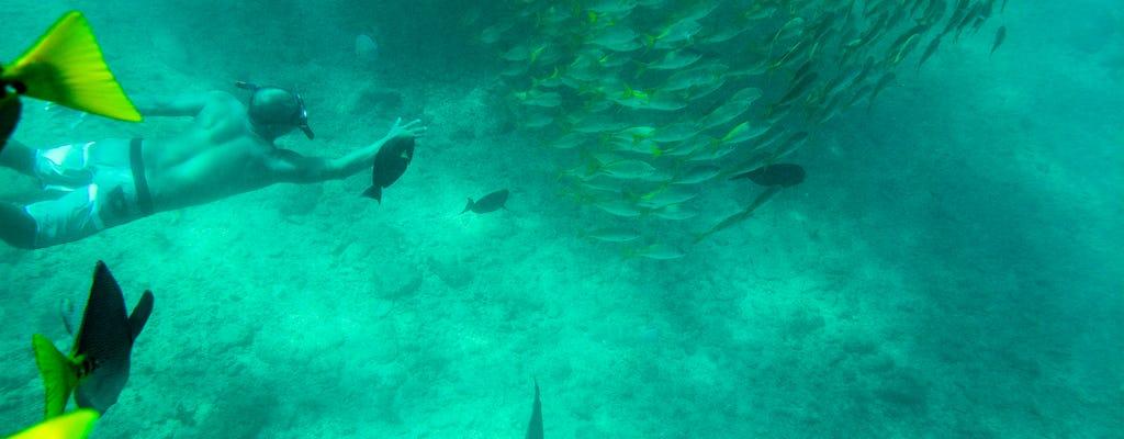 Prywatna wycieczka z nurkowaniem w Los Cabos do zatoki Chileno i zatoki Santa Maria