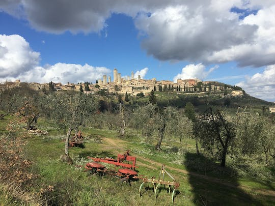 Saffron and Vernaccia wine tour in San Gimignano