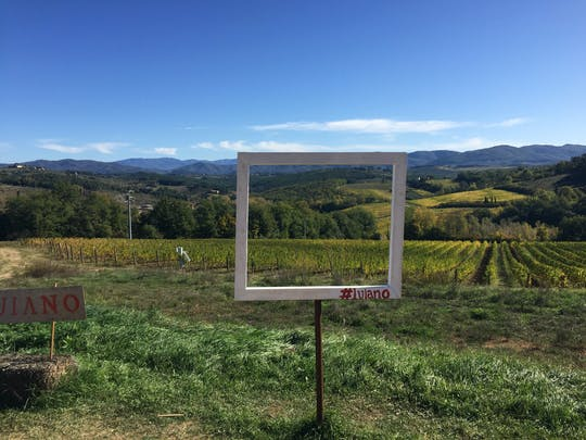Organic Chianti wine tour from Florence