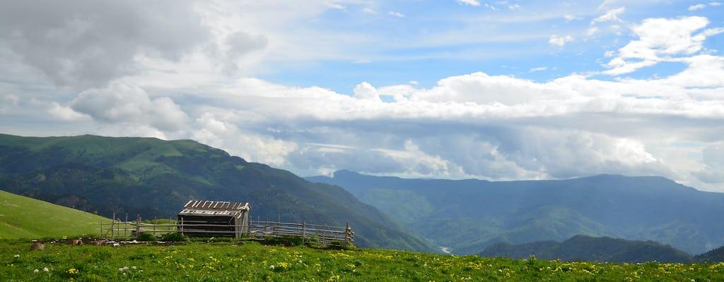 Индивидуальная экскурсия на плато Лагонаки курорт из Краснодара