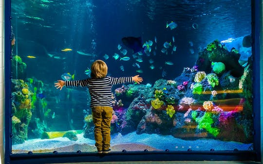 AquaDom & SEA LIFE Berlin tickets