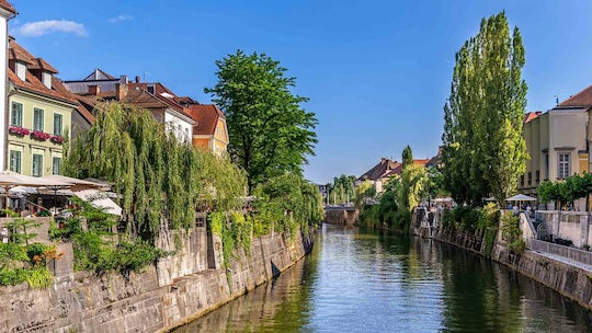 City tour and boat cruise along the Ljubljanica