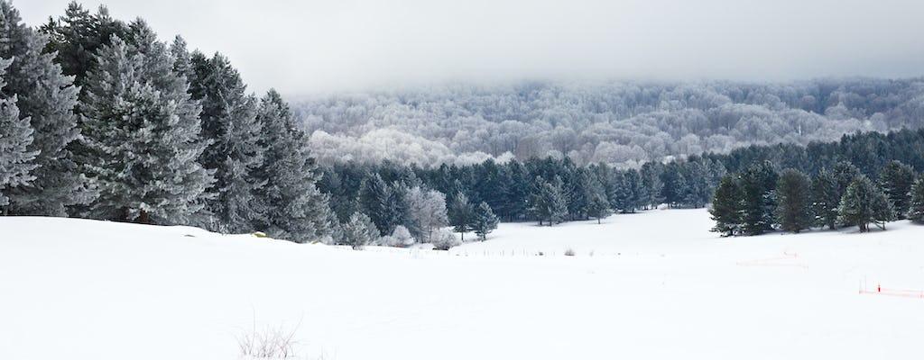 Sila National Park sneeuwschoenentocht met lunch