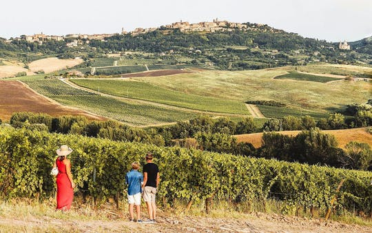 Excursão vinícola Vino Nobile di Montepulciano