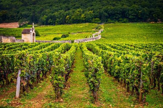 Viagem de um dia para vinho da Borgonha saindo de Paris