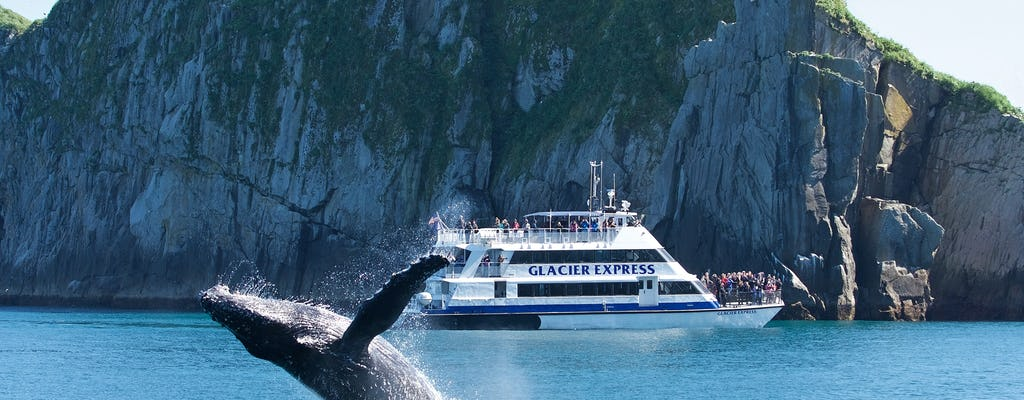 Full-Day Northwestern Fjord Adventure Cruise