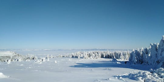 Full day hiking with snowshoes on Vitosha from Sofia