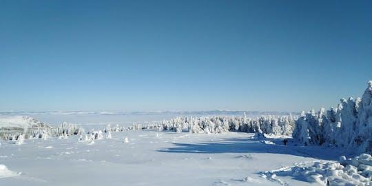 Op een dag wandelen met sneeuwschoenen op Vitosha vanuit Sofia