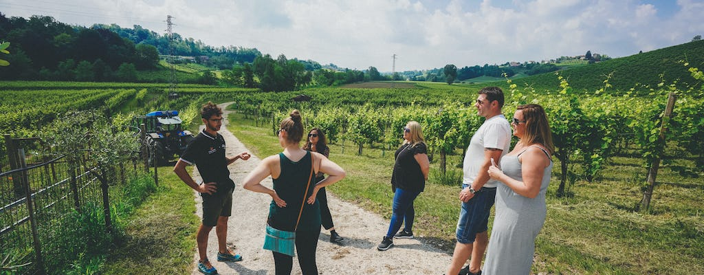 Prosecco wine tour from Venice