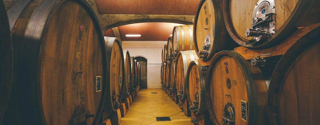Itinerario vitivinicolo in Valpolicella alla scoperta dell'Amarone