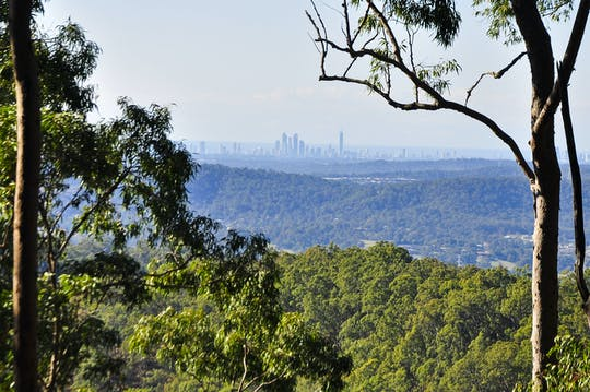 Tamborine Mountain and Gold Coast tour