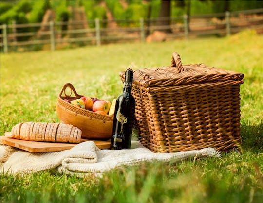 Picnic in the vineyards of Umberto Cesari's wine cellar